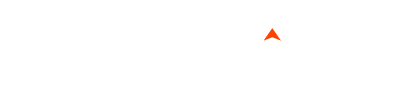 SEO Auditors